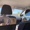 mampara protectora vehículos
